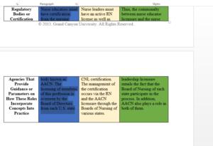 Nursing Roles Graphic Organizer Template NUR 513